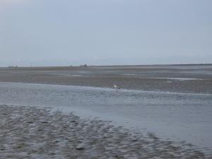 Cuxhaven Wattenmeer