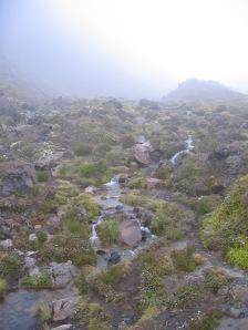A small stream in the alpine landscape