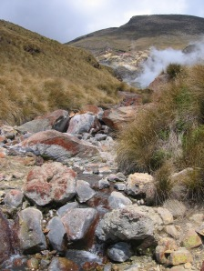 A small stream and volcanic activity from the ground